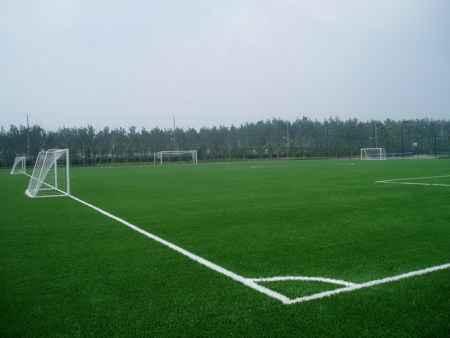 足球场人造草坪工程