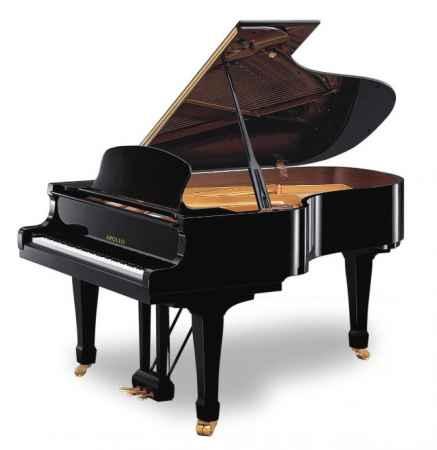 上海阿波罗钢琴